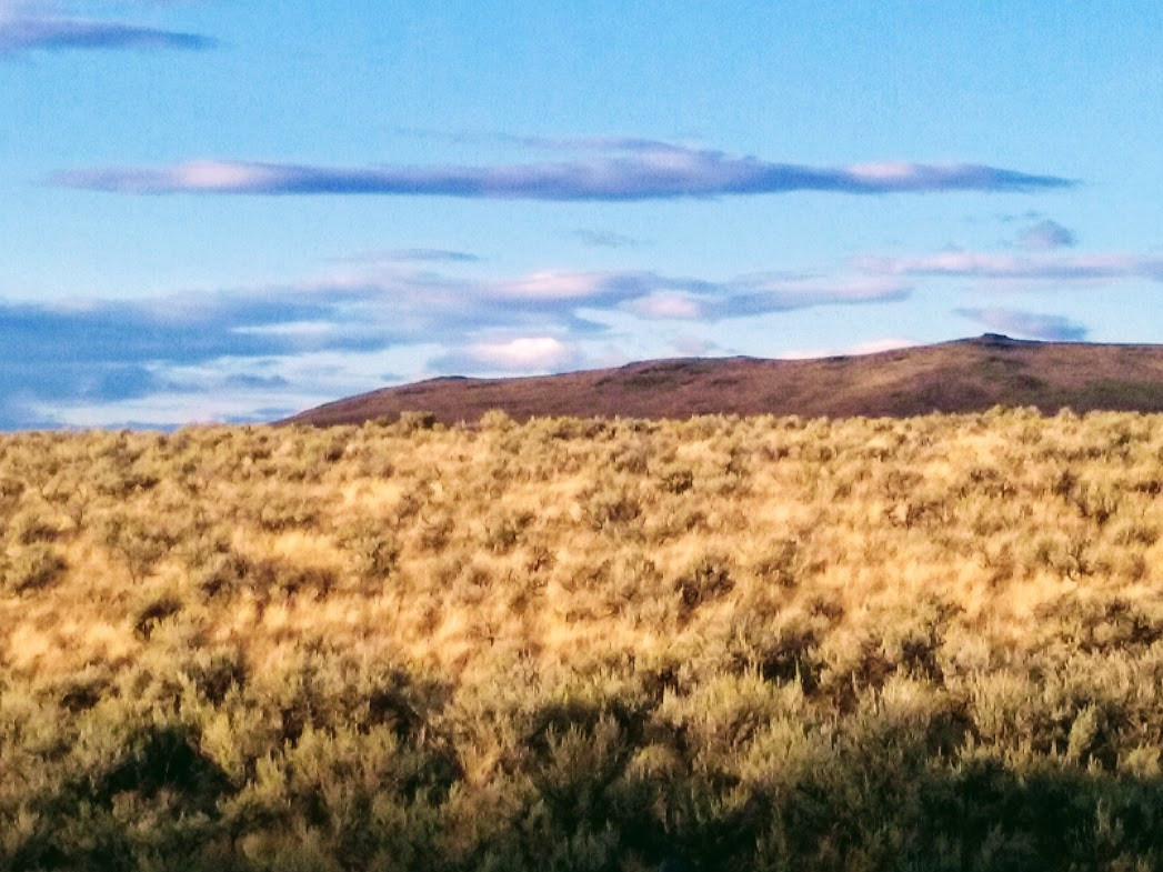 High Desert View - Hills and Sagebrush big blue sky - yellow scrub.